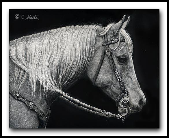 Keen - American Quarter Horse
