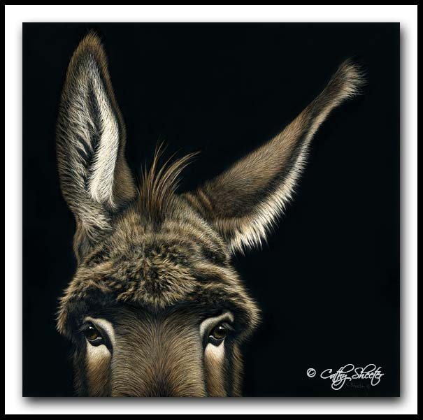 I'm All Ears - scratchboard and Ink Donkey