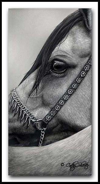 Arabian Elegance - Scratchboard Arabian Horse