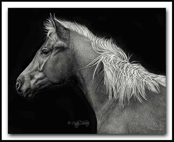 At Attention - Mustang Scratcboard