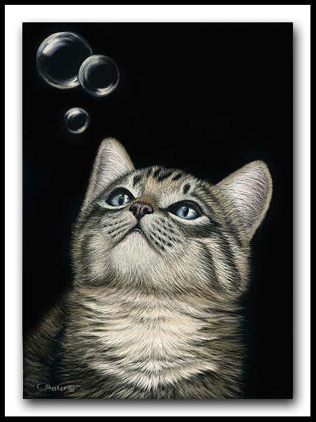 Bubbles - scratchboard and ink kitten