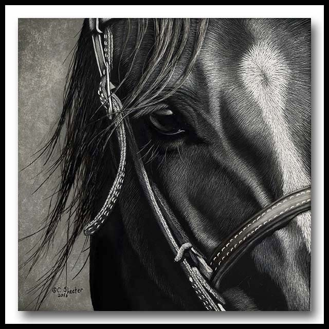 Caught In The Moment - scratchboard horse
