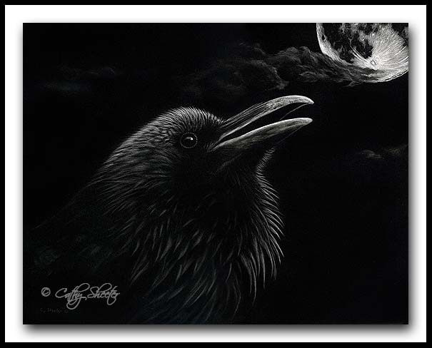"""""""As Darkness Descends"""" - Common Raven Scratchboard"""