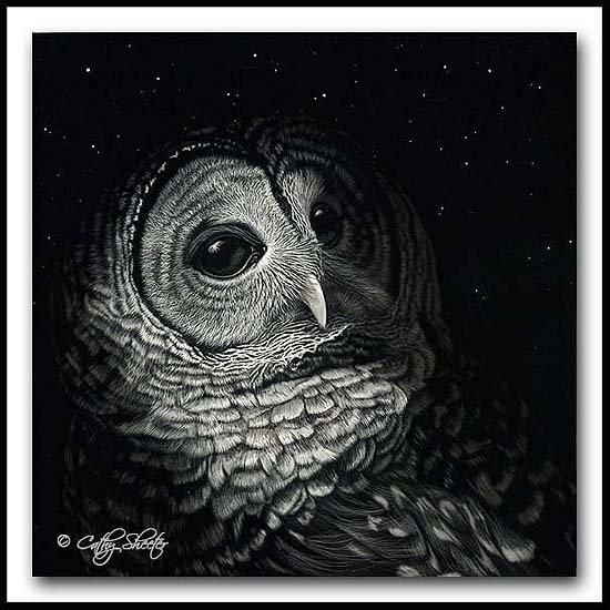 By Dawns Early Light- Scratchboard Barred Owl