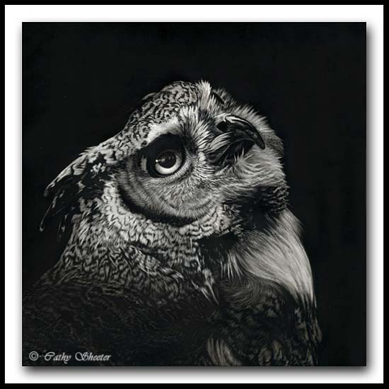 The Enlightened -Great Horned Owl Scratchboard Art