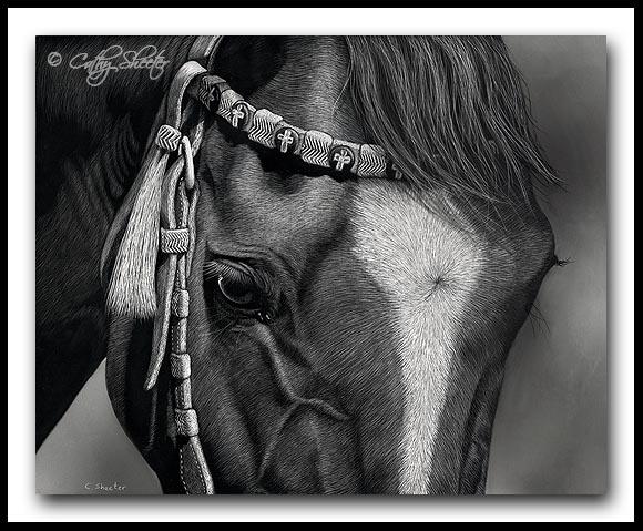 American Quarter Horse - Scratchboard Art