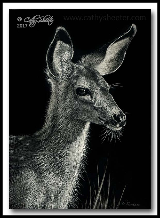 """""""Fawn Over me"""" - scratchboard"""