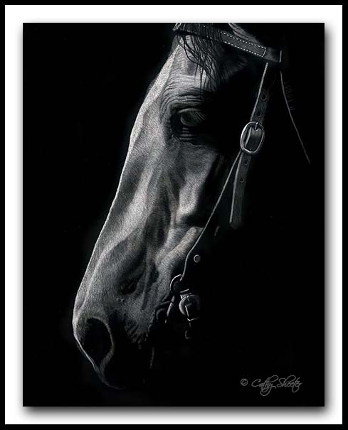 'Good Ole Boy' -Horse Scratchboard Art