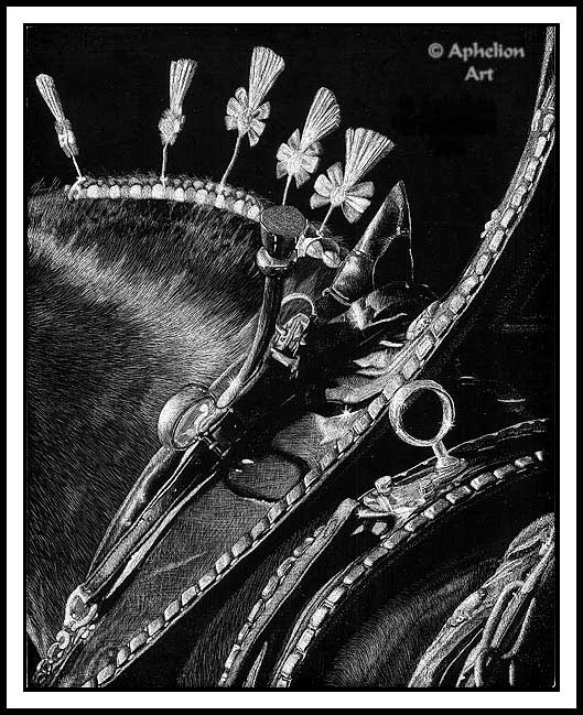 Dress Attire; scratchboard art by Cathy Sheeter;  Percheron Draft Horse