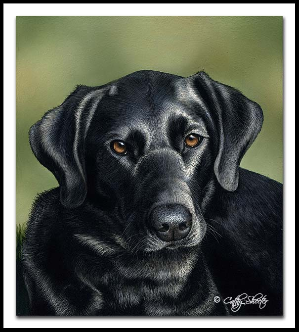 Heart - Scratchboard Labrador Retriever