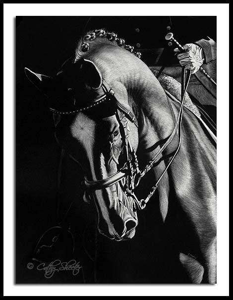 Impulsion - Scratchboard dressage horse