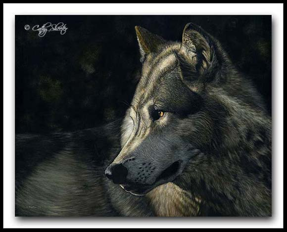 Just A Glance - scratchboard and ink wolf