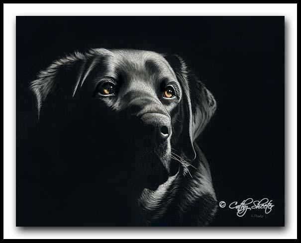 Loyalty - Scratchboard Art Labrador