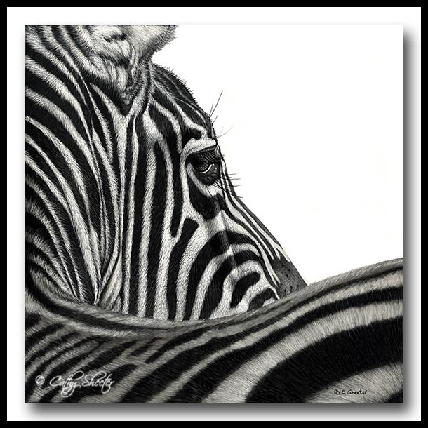 One of a Kind - Scratchboard