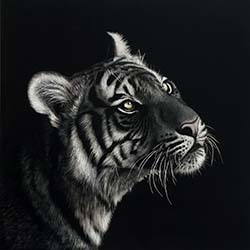 Other Wildlife Art