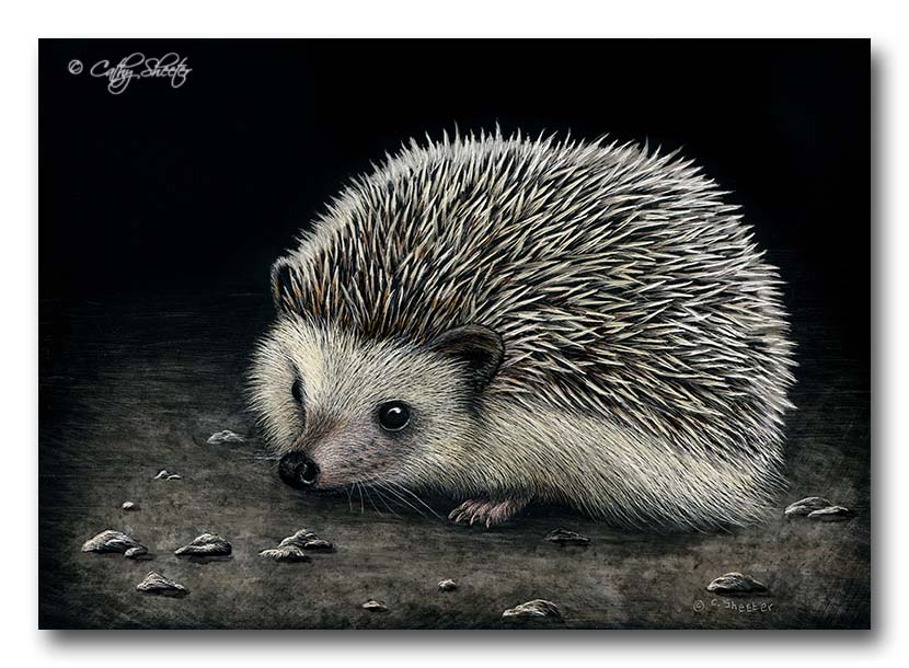 Just Poking Around - Scratchboard and Ink Hedgehog