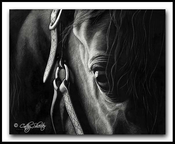 Quiet Connection - Arabian Horse Scratchboard