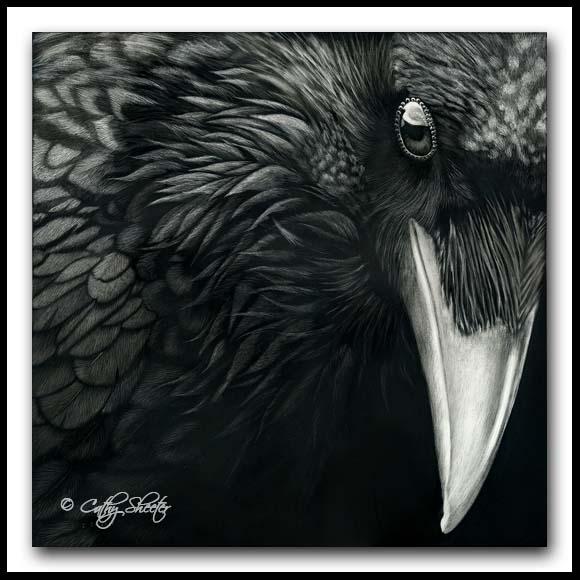 Common Raven - Scratchboard Art