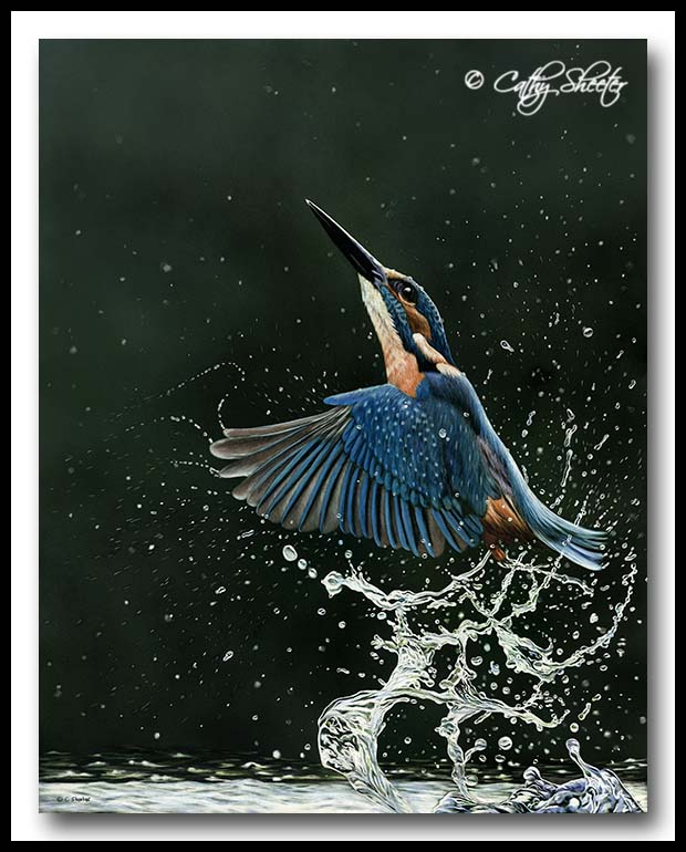 Common Kingfisher - Scratchboard Art
