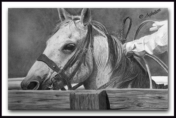 Roping Box - Graphite Pencil Horse