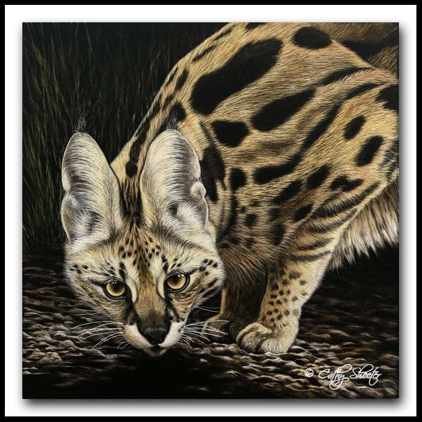 """Serval Surveillance"" - scratchboard and ink"