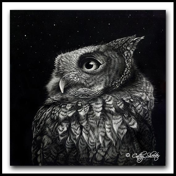 'Sounds In The Night' -Screech Owl Scratchboard Art