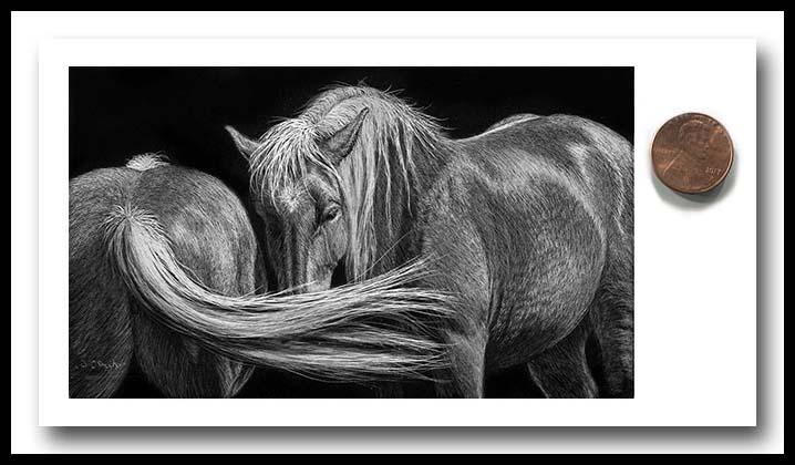 Draft Horses - Scratchboard