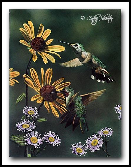 Summer Splendor- Scratchboard and Ink Hummingbirds