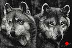 The Brotherhood - Scratchboard Art Wolves