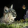 Flutterby - Scratchboard Bobcat
