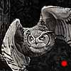 The Huntsman - Scratchboard Great Horned Owl