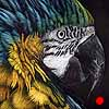 Macaw Mini - Scratchboard Art