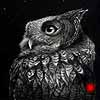 Sounds In The Night - Scratchboard Eastern Screech Owl