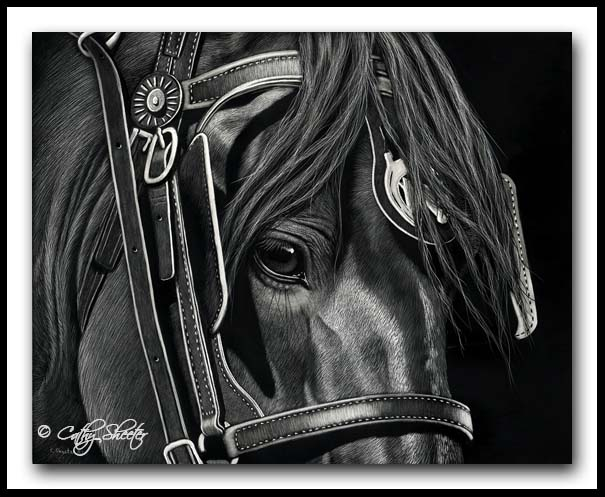 Team Player - scratchboard horse
