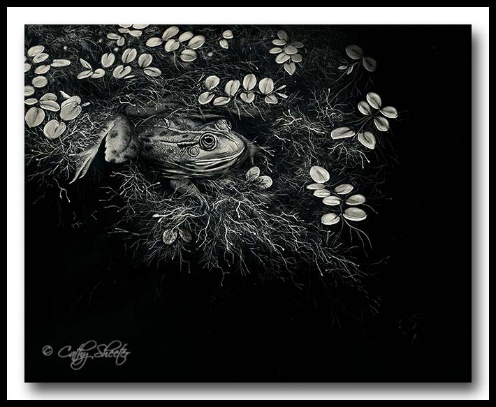 Water World - Scratchboard Art