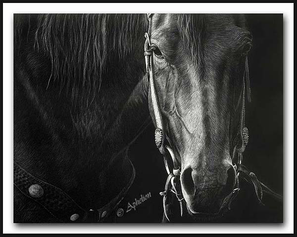 What Next - Scratchboard Art Horse