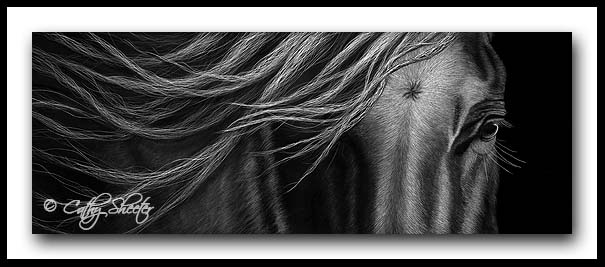 Wild Wind- Scratchboard Horse