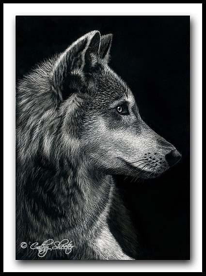 Wolf- Scratchboard